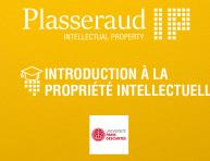 Plasseraud IP Formation PI
